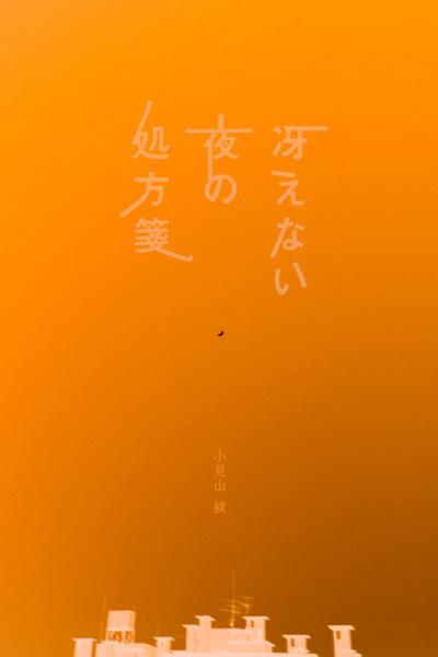 l_shunkomiyama_02